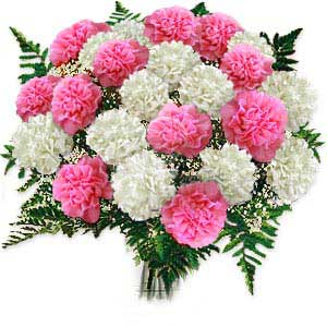 Carnations Arrangements
