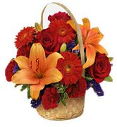 Mixed Flower Basket - Beauty of Brown