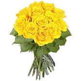 Yellow Roses - Sunny Roses