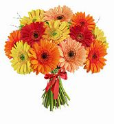 Send Flowers To Philippines From Usa Dubai Online Flower