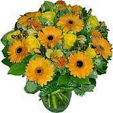 Yellow roses with Orange gerberas  - Sweet Sunny