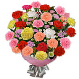 Carnation Spray - Carnations Floral