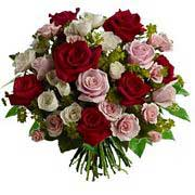 Mixed Roses Selection - Lavish Love