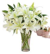 White Lily Arrangement - Harmony